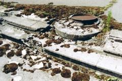 tschernobyl15
