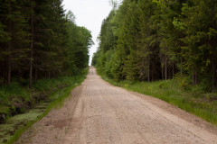 Schotterstrecke in der Rominter Heide